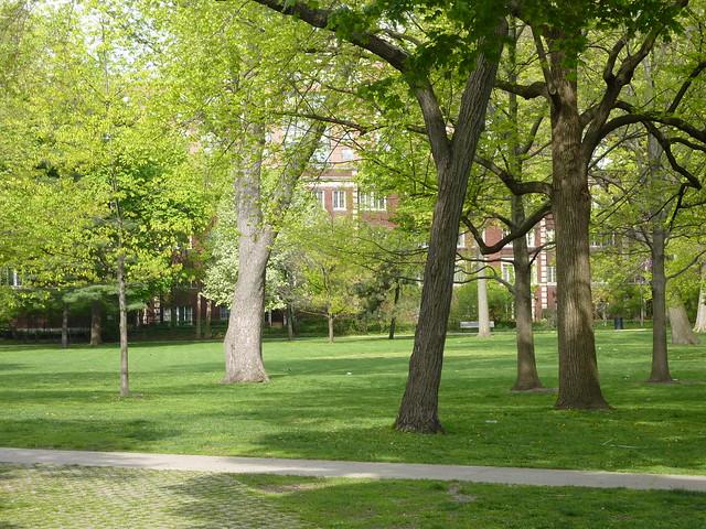 oak park il austin gardens flickr photo sharing