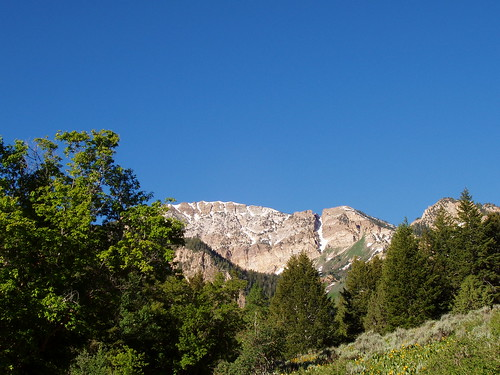 West face of Deseret Peak  from the road to the trailhead.