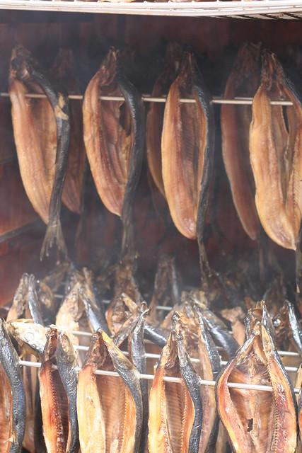 Fisch Heißräuchern