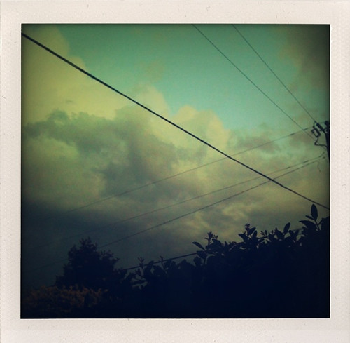 life morning blue trees sky storm green rain yellow skyline clouds walking polaroid outside outdoors pretty view florida cloudy iphone northflorida