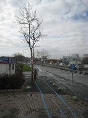 IMG_1359