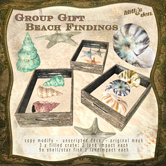 Lilith's Den group gift July 17 - Beach Findings