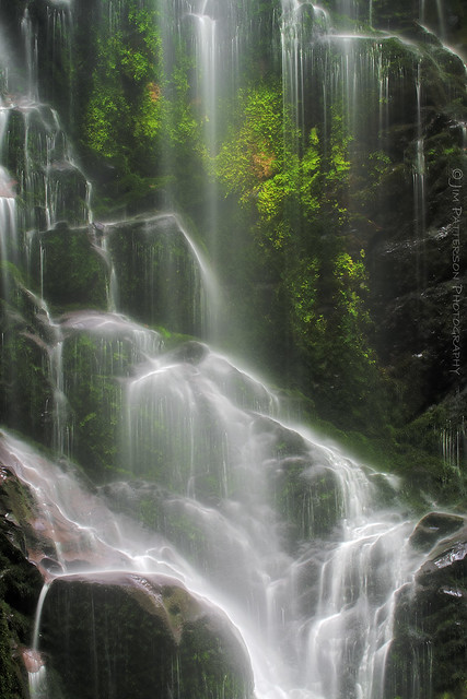 Berry Creek Falls - Big Basin State Park, California