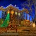 Williamson County Courthouse and Tree