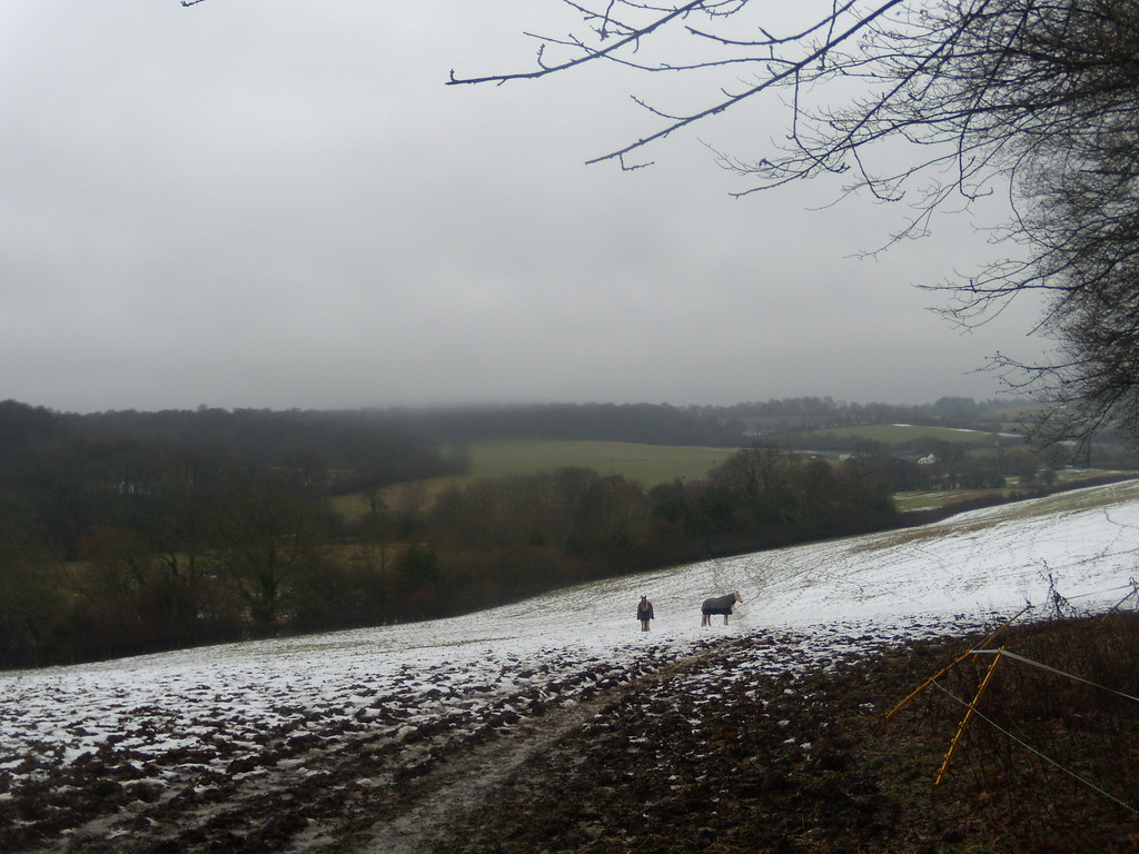 horse on the hill DSCN8599 Chorleywood to Chesham