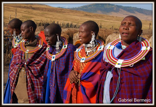 Baile de colores - Ngorongoro
