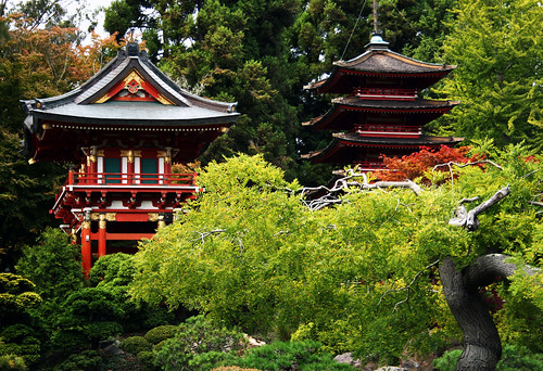 San Francisco Japanese Tea Garden - Temple Gate and Pagoda 4