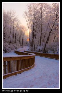 Snow on the Big Creek Greenway, Forsyth County, GA