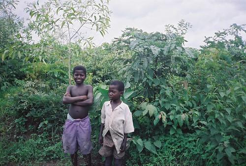 4440970355 70011b9d83 Imágenes frescas de reforestación