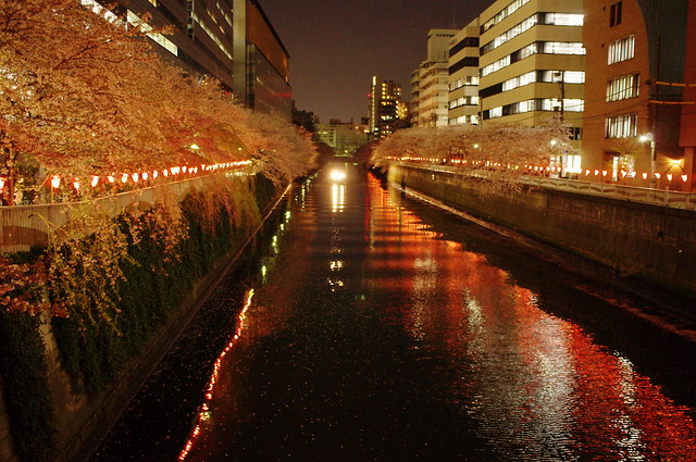 night light river