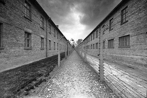 "Auschwitz from the book ""If This Is a Man"" by Primo Levi"