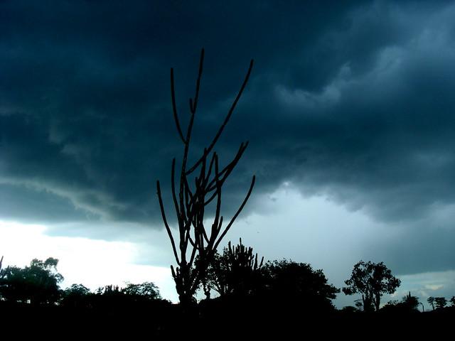 Nublado/Cloudy