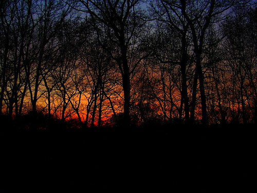 morning blue trees red orange colors yellow sunrise dawn shadows connecticut newengland coppercloudsilvernsun