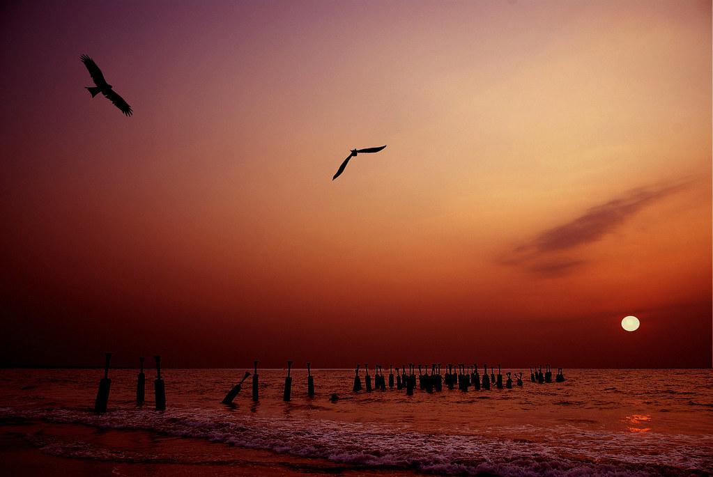 Catch me if You Can....Calicut Beach