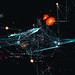 holographics_007 by motionographer