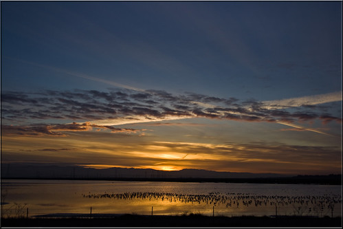 city cloud birds sunrise bay san francisco day awakening cloudy salt 100views redwood ponds baylands evaporation 5273