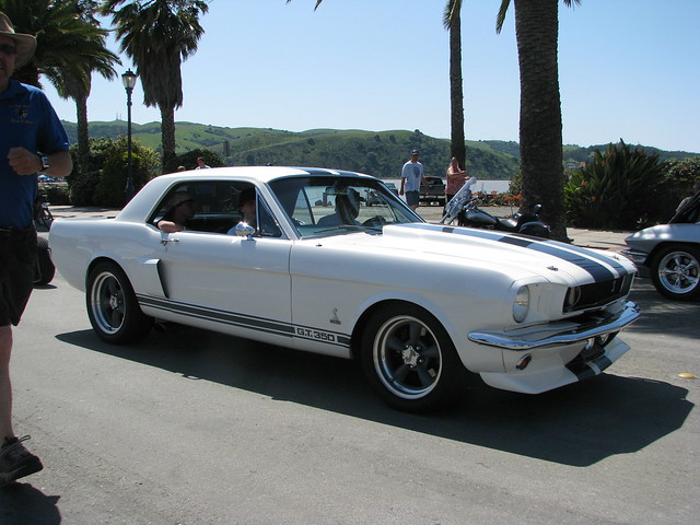 1965 ford shelby mustang gt350 custom 39 6cobra5 39 4 flickr photo sharing. Black Bedroom Furniture Sets. Home Design Ideas