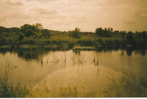 florida gainesville 35mmfilm paynesprairie