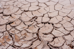 soil, drought, disaster,