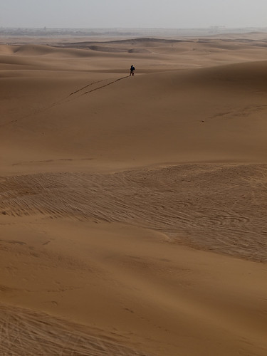africa sand dune namibia swakopmund skeletoncoast erongoregion q9099563