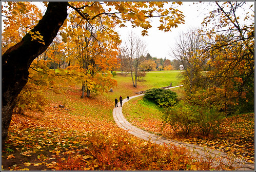 park autumn tree fall nature colors landscape latvia autumncolors turaida topshots mywinners platinumheartaward natureselegantshots panoramafotográfico peopleenjoyingnature peopleenjoingnature theoriginalgoldseal mygearandmepremium mygearandmebronze flickrsportal