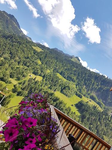 Grüne Alpentagung St. Gerold