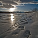 beaches of cheyenne by Dan Mead