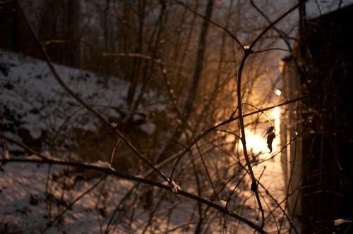 snow night nikon nighttime d5000