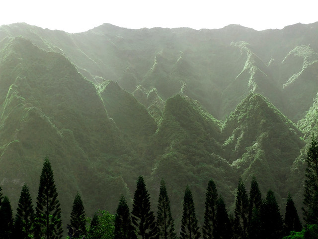 2000 foot Ko'olau Mountains- Explore #429