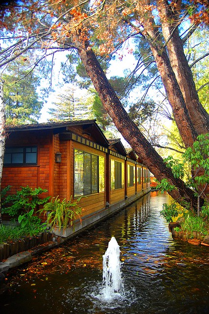 Fall Autumn At Dinah S Garden Hotel In Palo Alto Ca Flickr