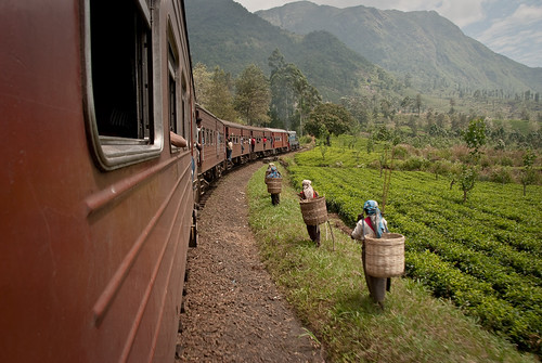 Train to Ella, Sri Lanka