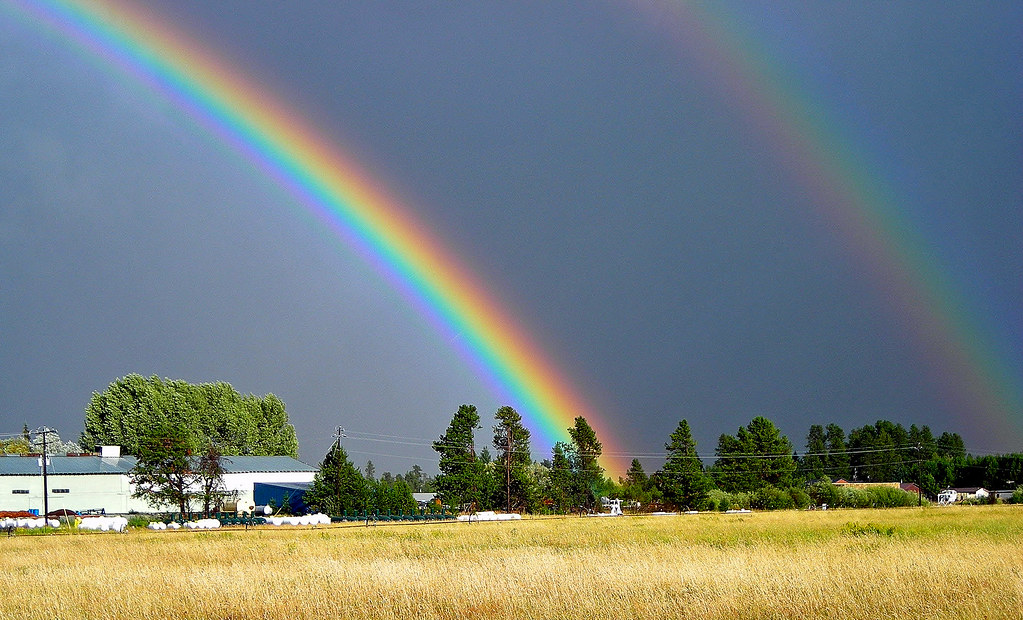 Idaho Rainbow