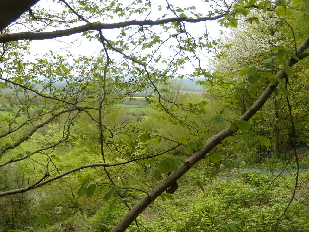 Verdure Hurst Green to Westerham