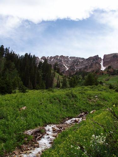 Deseret Peak Ridge as seen from Dry Lake Fork.