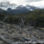 Tree Cemetery and Mountains - El Chalten, Argentina