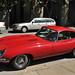 1961-1967 Jaguar E-Type by Beetlebomb Pohutukawa