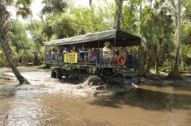 Wakacje i Przewodnik - wycieczka platformami po mokradlach
