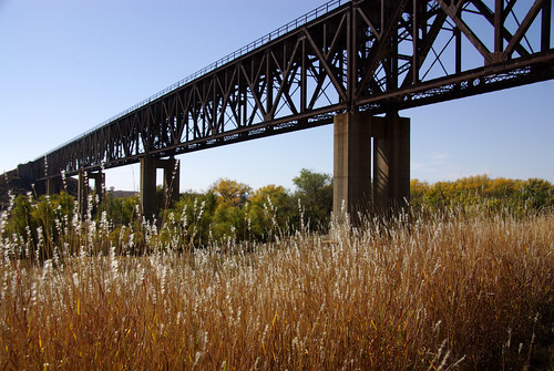 railroad bridge brown grass gold golden weeds kansas railroadbridge wildgrass buffalograss shamrockkansas