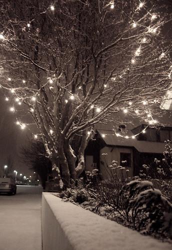 Snow! by Hugrún Lena