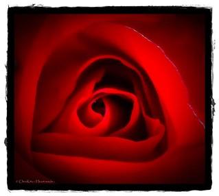 - Heart inside -