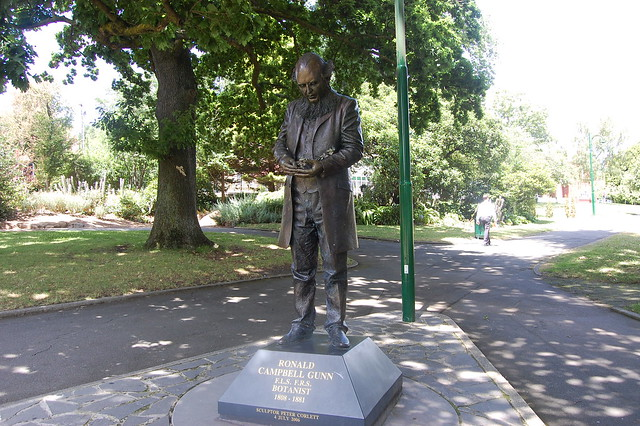 city park figure2