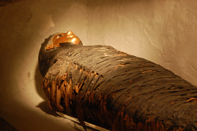 Egyptian Mummy Flickr Photo Sharing