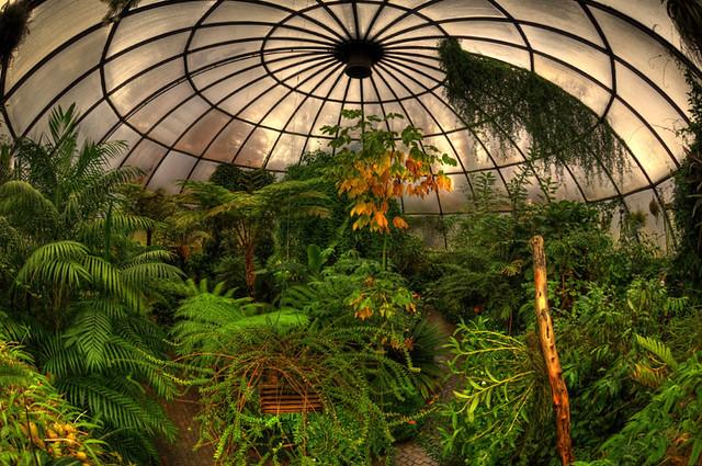 Subtropenhaus, Greenhouse Dome, Zurich Botanical Gardens, Botanischer Garten Zürich