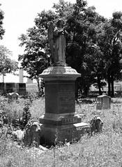 Olivewood Cemetery, Houston, Texas 0502101241BW