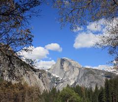 Half Dome........ Yosemite National Park