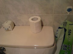 Toilet paper... roll?