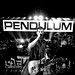PENDULUM_band_-59