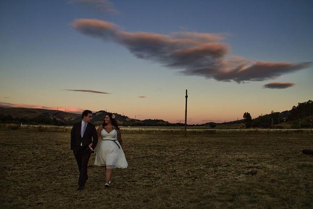 wedding couple (2010)
