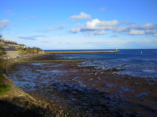 Berwick upon Tweed estuary at low tide