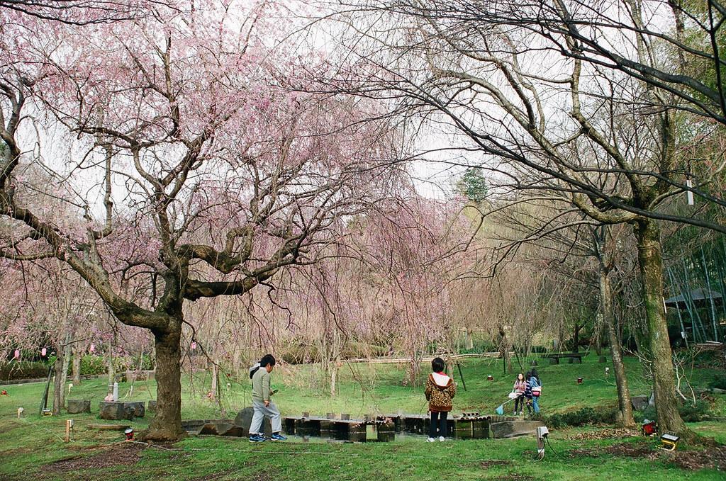 Haruyasumi  - Spring Holiday by Luno_Luno